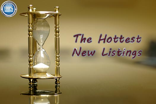 the hottest new listings
