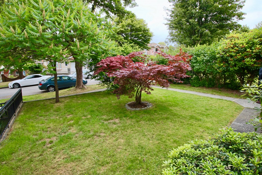 2454 E 20th Ave Front yard